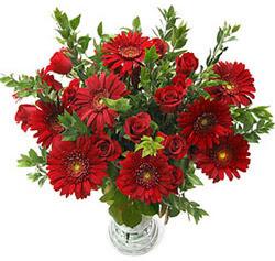5 adet kirmizi gül 5 adet gerbera aranjmani  Denizli kaliteli taze ve ucuz çiçekler