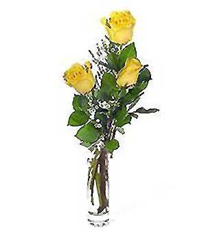 Denizli İnternetten çiçek siparişi  3 adet kalite cam yada mika vazo gül