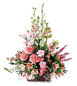 Denizli çiçek mağazası , çiçekçi adresleri  mevsim çiçeklerinden özel