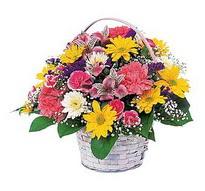 Denizli çiçek servisi , çiçekçi adresleri  mevsim çiçekleri sepeti özel