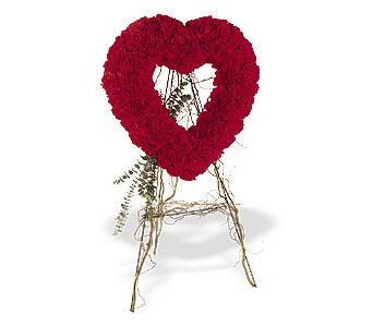 Denizli online çiçekçi , çiçek siparişi  karanfillerden kalp pano