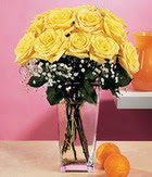 Denizli online çiçekçi , çiçek siparişi  9 adet sari güllerden cam yada mika vazo