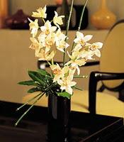 Denizli çiçek yolla , çiçek gönder , çiçekçi   cam yada mika vazo içerisinde dal orkide