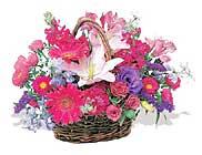 küçük karisik özel sepet   Denizli çiçekçi mağazası