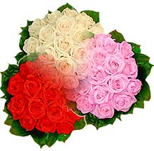 3 renkte gül seven sever   Denizli çiçek servisi , çiçekçi adresleri