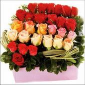 15 adet renkli gül ve cam   Denizli güvenli kaliteli hızlı çiçek