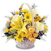 sadece sari çiçek sepeti   Denizli uluslararası çiçek gönderme
