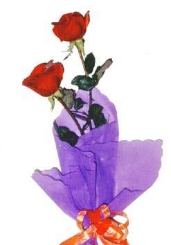 2  adet kirmizi gül buketi   Denizli çiçek servisi , çiçekçi adresleri