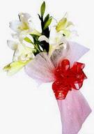 Denizli çiçek servisi , çiçekçi adresleri  ince vazoda gerbera ve ayi