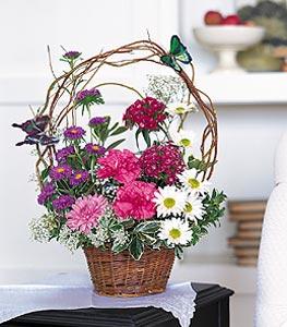 Denizli çiçekçi telefonları  sepet içerisinde karanfil gerbera ve kir çiçekleri