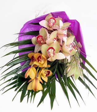 Denizli çiçekçi telefonları  1 adet dal orkide buket halinde sunulmakta