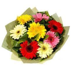 9 adet karisik gerbera demeti  Denizli internetten çiçek satışı