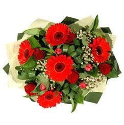 Denizli çiçek mağazası , çiçekçi adresleri   5 adet kirmizi gül 5 adet gerbera demeti
