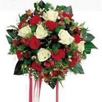 Denizli çiçek mağazası , çiçekçi adresleri  6 adet kirmizi 6 adet beyaz ve kir çiçekleri buket