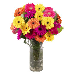 KARISIK GERBERALARDAN CAM VAZO TANZIMI  Denizli internetten çiçek siparişi