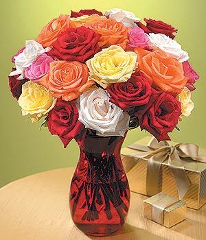 Denizli ucuz çiçek gönder  13 adet renkli gül