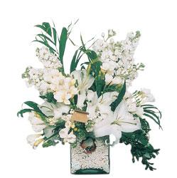 Denizli İnternetten çiçek siparişi  sadece beyazlardan olusmus mevsim cam yada mika tanzim