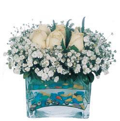 Denizli güvenli kaliteli hızlı çiçek  mika yada cam içerisinde 7 adet beyaz gül