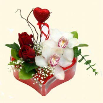 Denizli hediye çiçek yolla  1 kandil orkide 5 adet kirmizi gül mika kalp