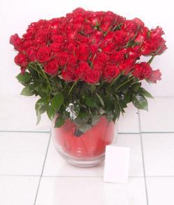 Denizli çiçek gönderme  101 adet kirmizi gül