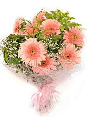 Denizli çiçek online çiçek siparişi  11 adet gerbera çiçegi buketi