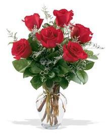 Denizli uluslararası çiçek gönderme  7 adet kirmizi gül cam yada mika vazoda sevenlere