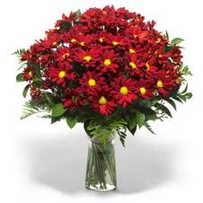 Denizli 14 şubat sevgililer günü çiçek  Kir çiçekleri cam yada mika vazo içinde