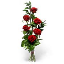 Denizli çiçek satışı  mika yada cam vazoda 6 adet essiz gül