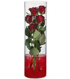 cam içerisinde 7 adet kirmizi gül  Denizli çiçek yolla , çiçek gönder , çiçekçi