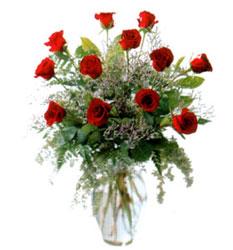 Vazo içerisinde 11 kirmizi gül  Denizli çiçek gönderme sitemiz güvenlidir