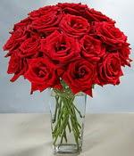 Denizli yurtiçi ve yurtdışı çiçek siparişi  Sevdiklerinize özel ürün 12 adet cam içerisinde kirmizi gül  Denizli kaliteli taze ve ucuz çiçekler
