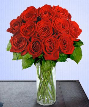 Anneme 12 adet cam içerisinde kirmizi gül  Denizli yurtiçi ve yurtdışı çiçek siparişi