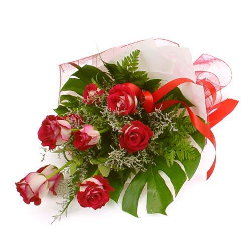 çiçek gönder 7 adet kirmizi gül buketi  Denizli çiçekçiler