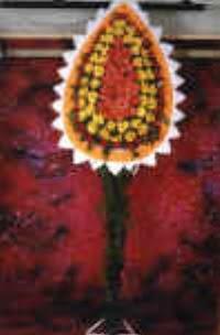 Denizli çiçek online çiçek siparişi  dügün açilis çiçekleri  Denizli çiçek servisi , çiçekçi adresleri