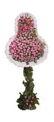Denizli çiçek mağazası , çiçekçi adresleri  dügün açilis çiçekleri  Denizli İnternetten çiçek siparişi