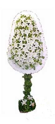 Denizli yurtiçi ve yurtdışı çiçek siparişi  nikah , dügün , açilis çiçek modeli  Denizli çiçek yolla