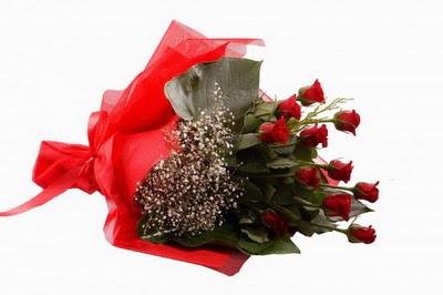 Denizli yurtiçi ve yurtdışı çiçek siparişi  11 adet kirmizi gül buketi çiçekçi