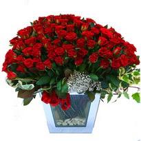 Denizli çiçek yolla , çiçek gönder , çiçekçi    101 adet kirmizi gül aranjmani