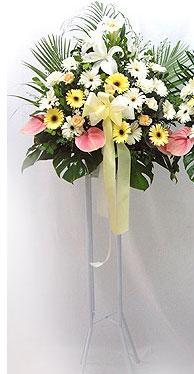 Denizli çiçek yolla   perförje çiçegi dügün çiçekleri
