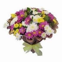 Denizli hediye sevgilime hediye çiçek  Mevsim kir çiçegi demeti