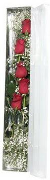 Denizli yurtiçi ve yurtdışı çiçek siparişi   5 adet gülden kutu güller