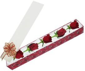 Denizli online çiçekçi , çiçek siparişi  kutu içerisinde 5 adet kirmizi gül