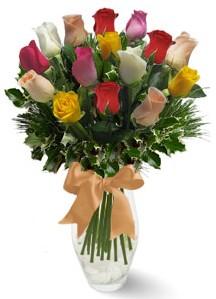 15 adet vazoda renkli gül  Denizli online çiçekçi , çiçek siparişi