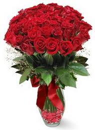 19 adet essiz kalitede kirmizi gül  Denizli çiçek , çiçekçi , çiçekçilik