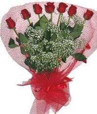 7 adet kipkirmizi gülden görsel buket  Denizli internetten çiçek satışı