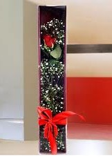 kutu içinde tek kirmizi gül  Denizli çiçekçi mağazası