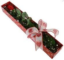 Tek kirmizi gül kutu içerisinde  Denizli internetten çiçek siparişi