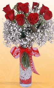 9 adet kirmizi gül cam yada mika vazoda  Denizli internetten çiçek satışı