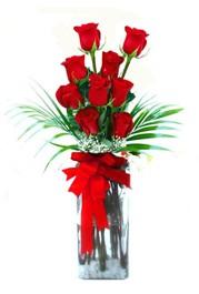 Denizli hediye sevgilime hediye çiçek  9 adet mika yada cam vazoda gül tanzimi