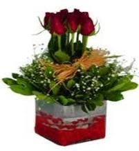 Denizli anneler günü çiçek yolla  7 adet mika yada cam vazoda gül tanzimi